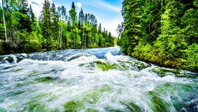 View Of Murtle River During High Snow Melt, In Wells Gray Provincial Park, BC, Canada Royalty Free Stock Image