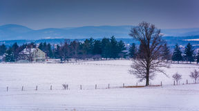 Free View Of Snow-covered Farm Fields And Distant Mountains From Long Royalty Free Stock Photography - 47706287