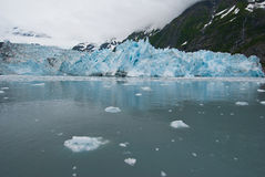 View Of Surprise Glacier Royalty Free Stock Photo