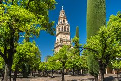 Free View Of The Bell Tower Of The Cathedral Mezquita-Cathedral From The Orange Courtyard Patio De Los Naranjos In Cordoba, Spain Stock Photo - 163824480