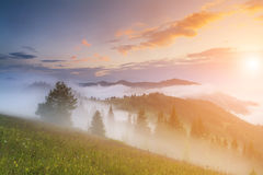 View Of The Misty Valley In The Mountains Stock Photo