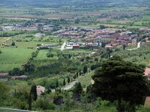 View Of The Olive Groves And Plains Around Cortona