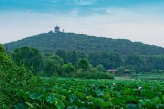 Free View Of The Yuantouzhu Park Stock Photo - 20366090