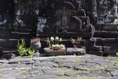 View of offerings in front of carving at the Preah Neak Pean temple stock photography