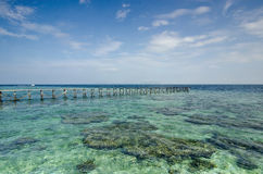 View of old broken jetty during sunny day with coral and green s Stock Photos