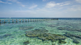 View of old broken jetty during sunny day with coral and green s Royalty Free Stock Photo