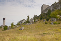 View on old castle in the Jura region. View on old castle in the Jura region near Czestochowa, Poland - Silesia stock images