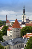View of Old city's roofs. Tallinn. Estonia Royalty Free Stock Images