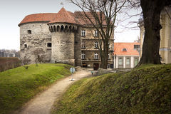 View on Old city of Tallinn. Estonia Stock Photography