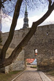 View on Old city of Tallinn. Estonia Stock Images