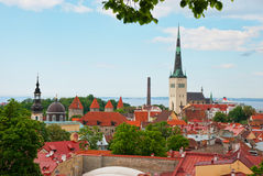 View of old tallinn with old olaf Royalty Free Stock Photography