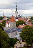 View of old Tallinn. View of roofs and towers of old Tallinn from an observation deck stock photo