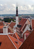 View of old Tallinn. View of roofs and towers of old Tallinn from an observation deck stock image