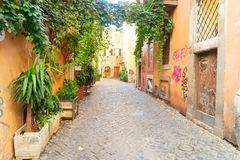 Street in Trastevere, Rome, Italy. View of old town italian narrow street with green plants in Trastevere, Rome, Italy stock image