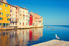 View on old town in Rovinj Stock Images