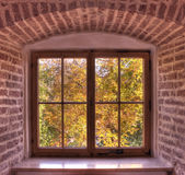View from old window Royalty Free Stock Images