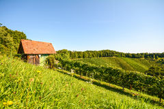 View at an old wooden hut in the vineyards, Southern Styria - Austria Royalty Free Stock Images