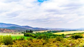 View of the Olifantsrivier valley along highway 62 between the towns of De Rust and Oudtshoorn in the Western Cape Province stock photo