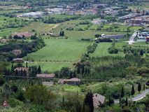 View of the olive groves and plains around Cortona Stock Photo