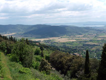 View of the olive groves and plains around Cortona Royalty Free Stock Photos