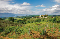 View of olive trees and hills with villa at the top in the Tuscan countryside. Stock Photo