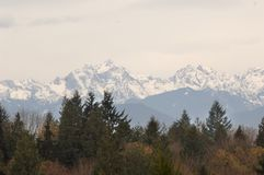 View of the Olympic Mountain Range and Mt Constance from the Lofall area. View of the Olympic mountain range with Mt Constance near the Hood Canal with a touch royalty free stock images