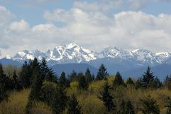 View of the Olympic Mountain Range and Mt Constance from the Lofall area. View of the Olympic mountain range with Mt Constance near the Hood Canal royalty free stock image