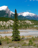 View On Canadian Rockies Mountains Stock Photography