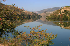View On Douro River And On Vineyards Stock Image