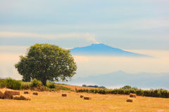 View On Etna From Aspromonte Field Stock Images