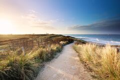 Free View On Sea Beach From Path On Dunes Royalty Free Stock Image - 182697626