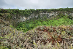 View of one of the twin volcanic craters in the highlands of Santa Cruz Royalty Free Stock Images