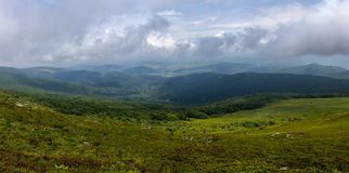 View onthe valley. View on a valley in Carpathians in summer Stock Images