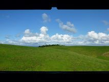 View onto meadows and rolling hills. View onto green meadows of Motutapu Island near Auckland with blue skies and white clouds in the background Royalty Free Stock Images