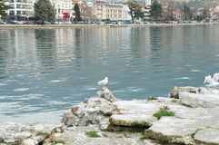 View onto Ohrid from the lake. OHRID, MACEDONIA - MARCH 12, 2017: View onto the town from the lake Royalty Free Stock Photos