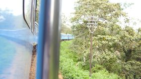 View from open doors of old blue train moving in scenic countryside at sunny day. Passenger railway transport riding. Through beautiful nature landscape at stock footage