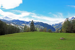View from open field at mountains with snow in autumn. View from open field, meadow, at mountains with little snow in autumn in Switzerland. Mountain landscape stock photos
