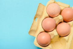 View of opened box of chicken eggs Stock Image