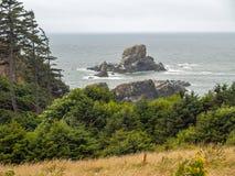 View of the Oregon Coast Stock Image
