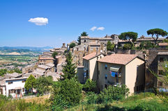 View of Orvieto. Umbria. Italy. Stock Images