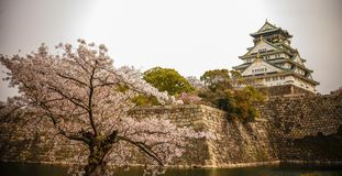 Osaka-jo Castle in Osaka, Japan stock image
