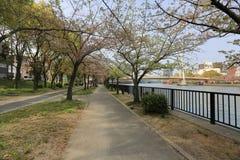 View of osaka city along the river, japan Stock Image