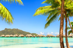 View of the Otemanu mountain with palm tree and stunning lagoon, Stock Image