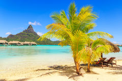 View of the Otemanu mountain with palm tree and stunning lagoon, Royalty Free Stock Photo