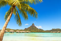 View of the Otemanu mountain with palm tree and stunning lagoon. Stock Photos
