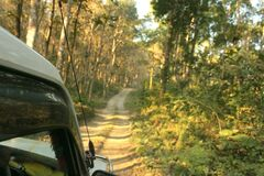 View from our running car, Chilapata Stock Images