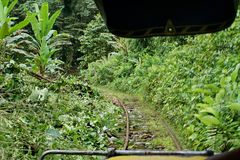 View out the front of a homemade `ghost train` that run on abandoned railroad tracks. View out the front of a homemade `ghost train` running through the jungle Royalty Free Stock Photo