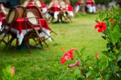 View on outdoor cafe. Summer time.  Royalty Free Stock Photo