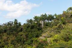 View over the Alejandro de Humboldt National Park region guantanamo cuba. UNESCO world heritage site royalty free stock image