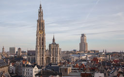 View over Antwerp with cathedral of our lady Royalty Free Stock Image